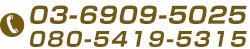 03-6909-5025